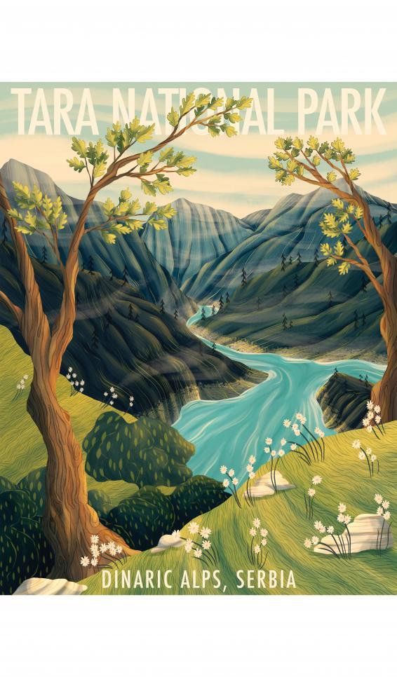 Tara National Park Illustration by Michayla Grbich ; Michayla Grbich