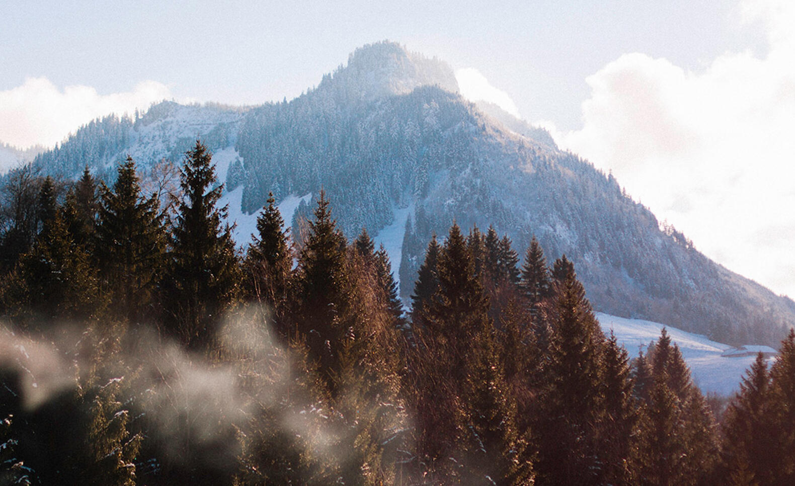 Mountain and forest landscape in Austria