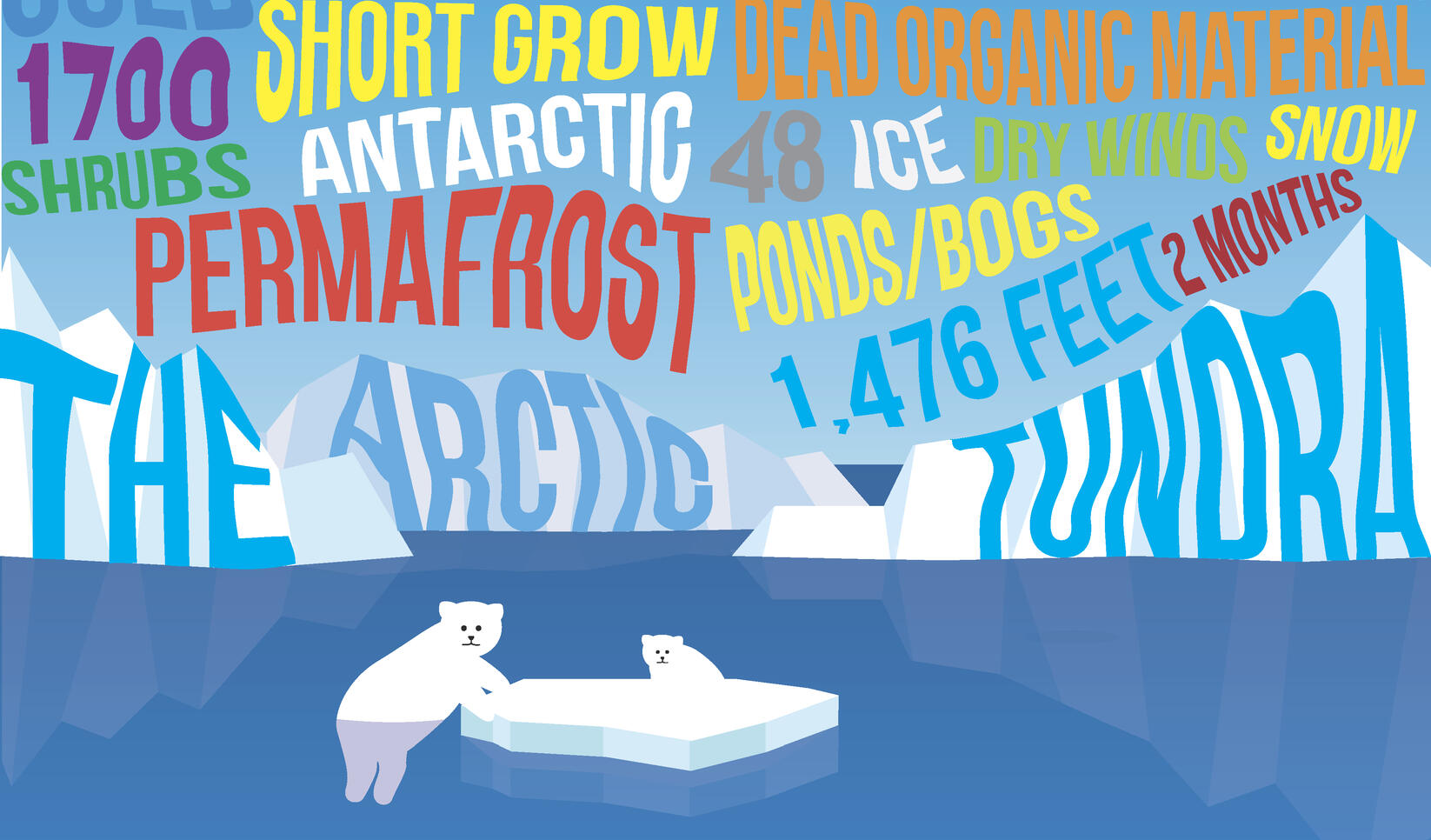 An informative typography poster featuring descriptive words for the Arctic Tundra and two polar bears. ; Andrew Schneider