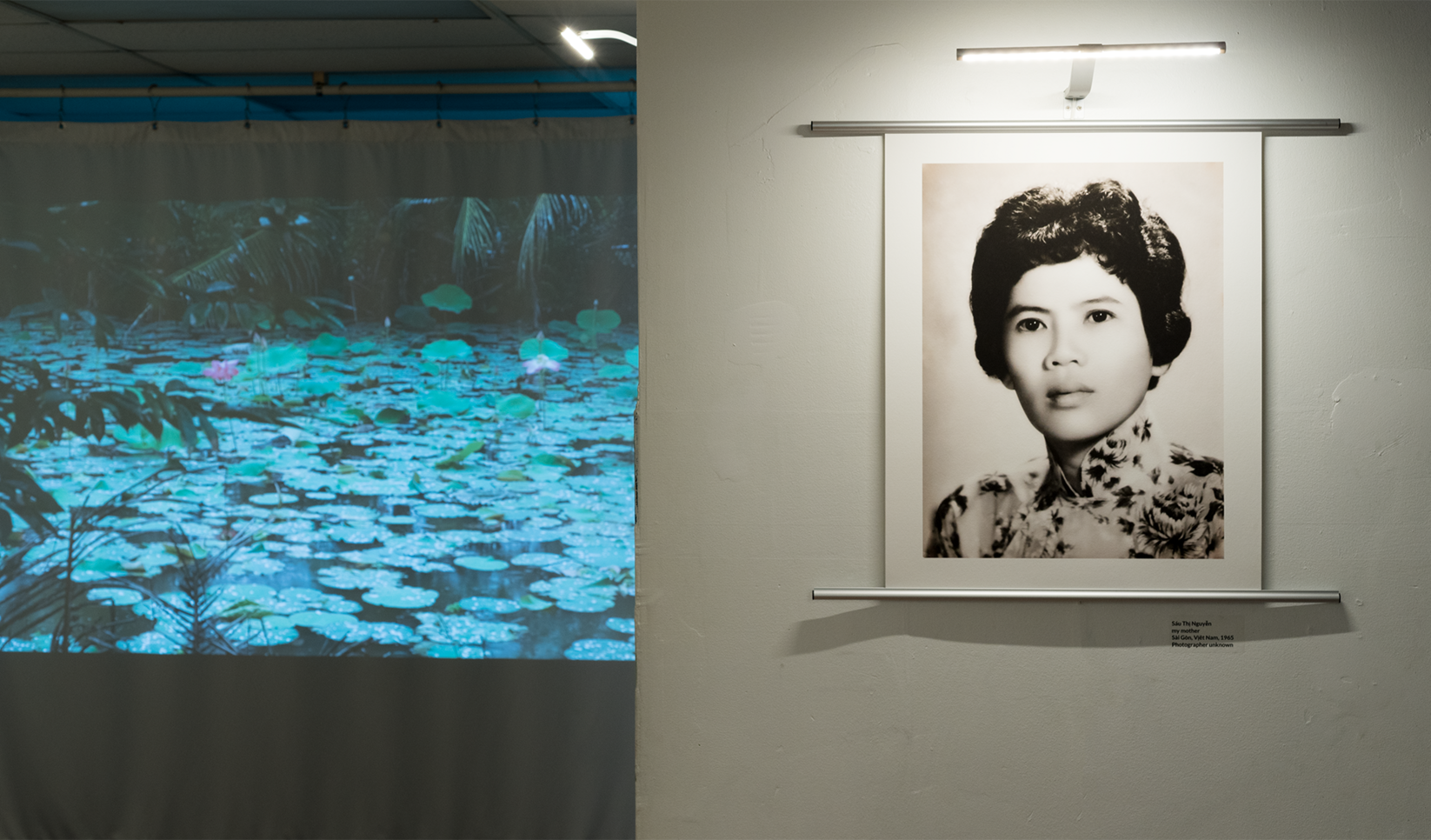 Đi thì không có đường về – Leave, then there is no way home. Sáu Thị Nguyễn, 1965. Footage of rain falling on lotus in a bomb crater pond, in her home village, 2018. (Installation View Photo by Constance Mensh for Asian Arts Initiative) ; Boone Nguyen