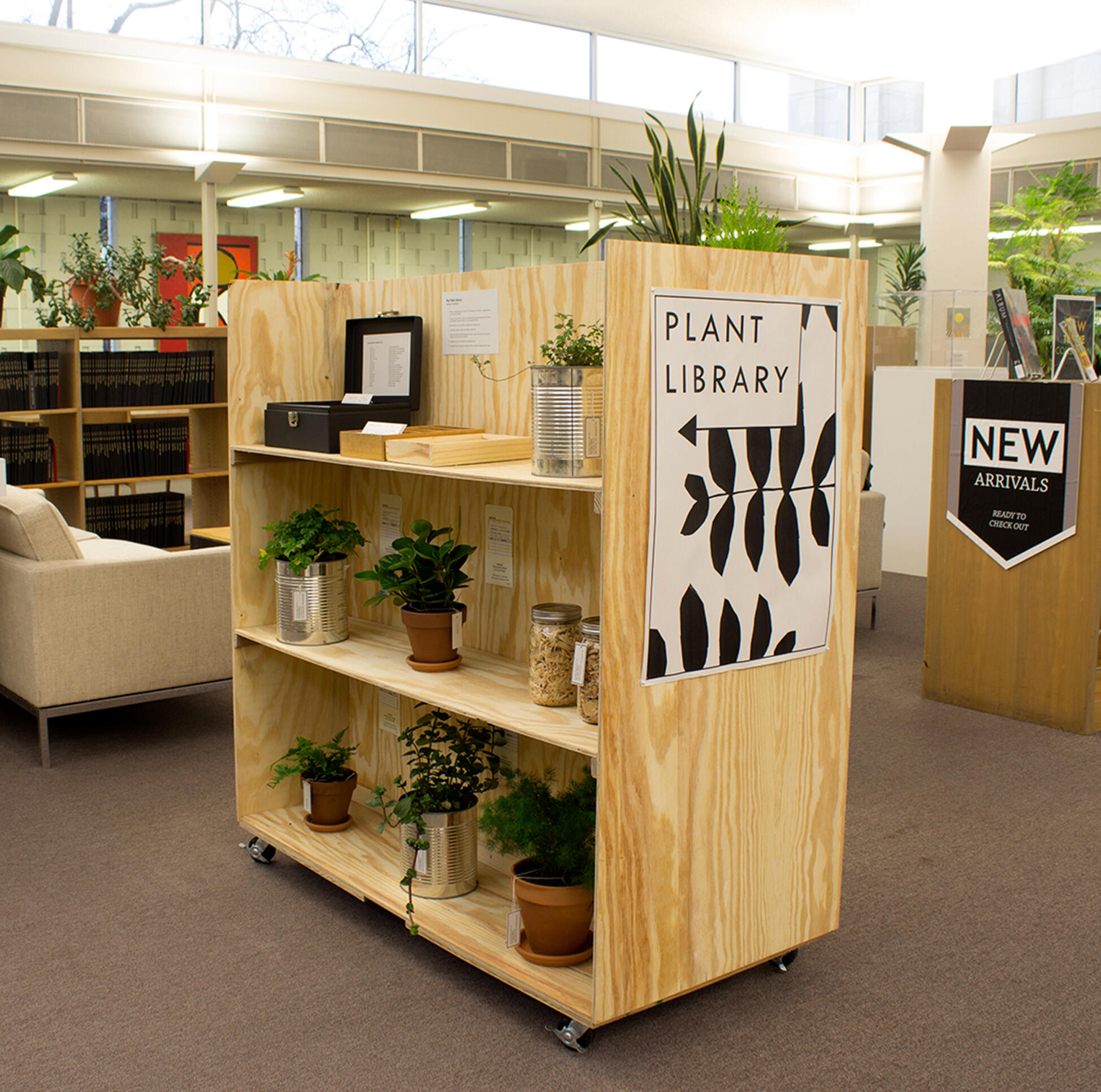 A curated shelf of plants in the MCAD library ; Julie Renee Benda